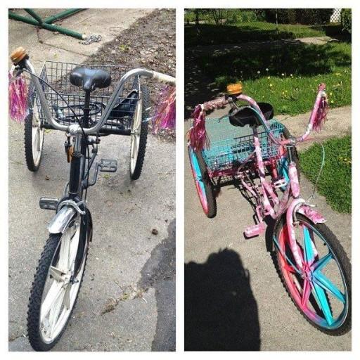 Cat cycling (7)