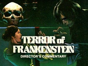 Director's Commentary poster